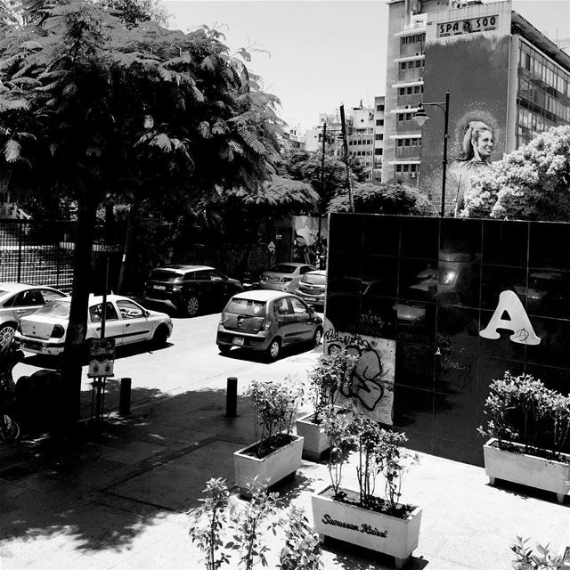 blackandwhite monochrome streetphotography art singer🎤 sabah hamra...