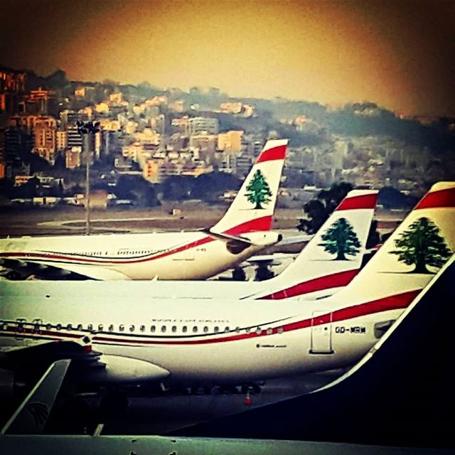 Our national Airlines .. @mea_airliban We fly within Lebanon's heart...... (Beirut–Rafic Hariri International Airport)