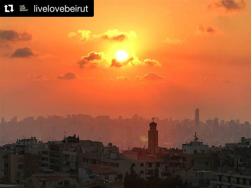 Repost @livelovebeirut・・・Golden sun by @ikraad ...