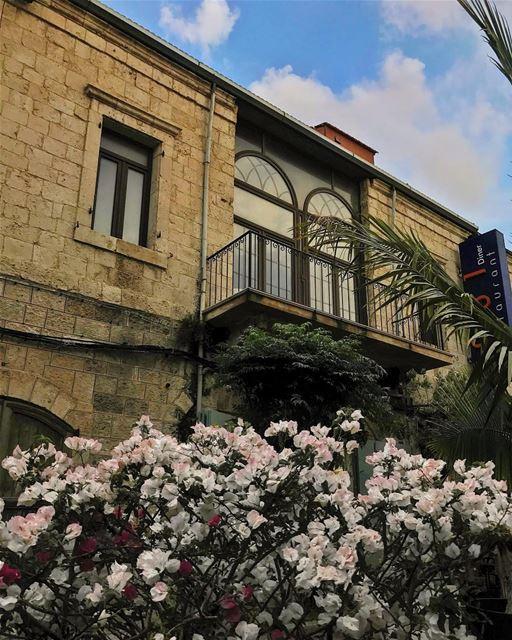 Fresh atmosphere🌸• beiruting beirut lebanon beirutcity downtown ... (Joünié)