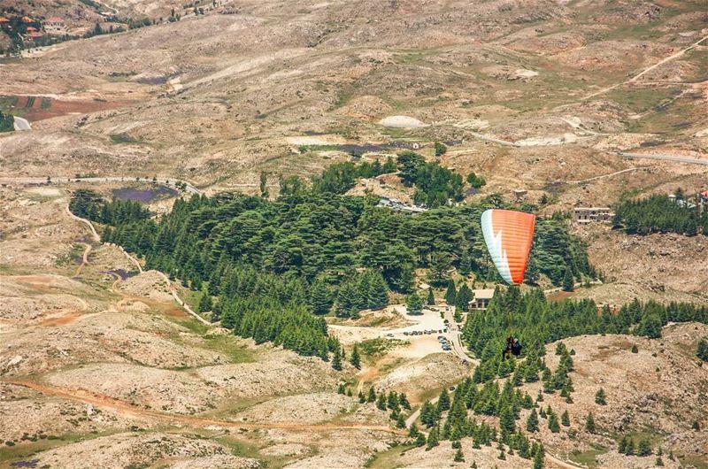 paragliding cedarsofgod lebanon upfromthesky adventureisoutthere ...