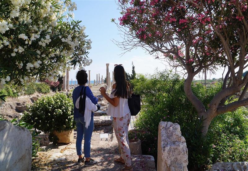 Ruins (and flowers) of Tyre🏛🌺🌿 skipwork tourists sour ... (Roman ruins in Tyre)