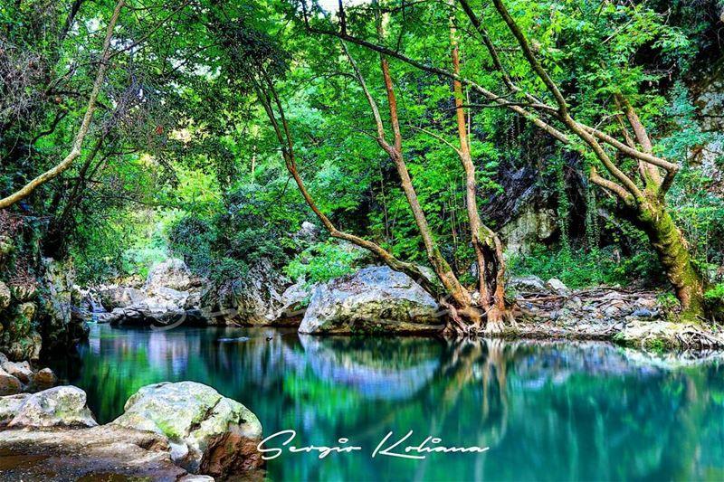 معاكسة. sergio_koliana_photography meetlebanon mylebanon ... (Yahchouch)