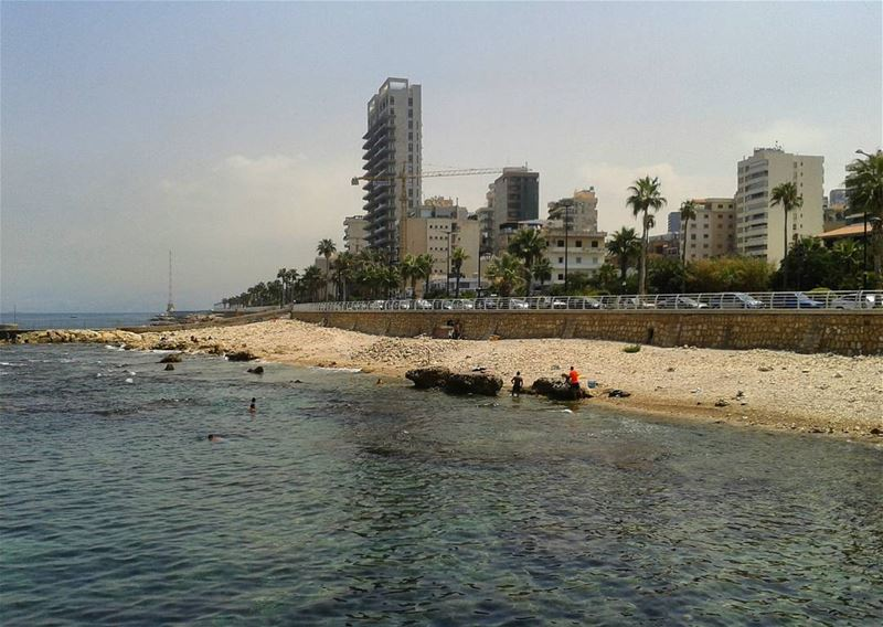 lebanon photooftheday instapicture nature instanature sunny naturelovers... (Beirut, Lebanon)