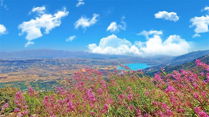 Best Dreams Happen when you're awake. LiveLoveBekaa LiveLoveLebanon... (Mount Lebanon Governorate)