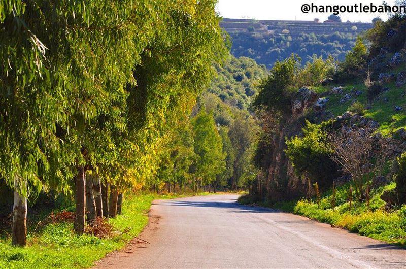 What about an afternoon bike ride ?--------------------------------... (Beït Lîf, Al Janub, Lebanon)