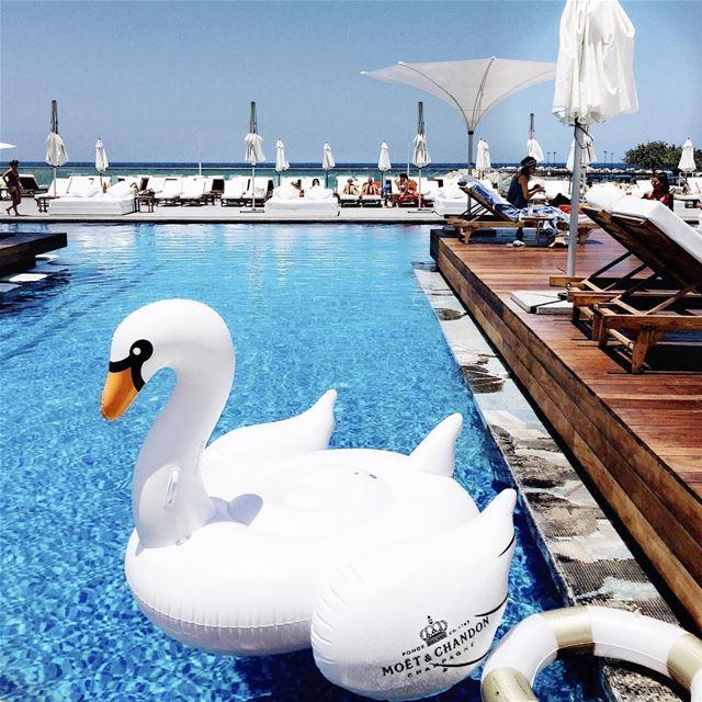 👙🍸🇱🇧🏊🏻🇱🇧... (Lebanon Kaslik Hotel Veer)