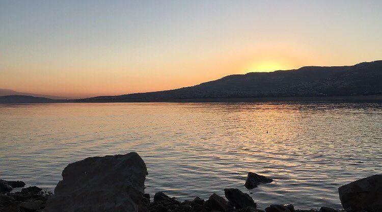 photography naturephotography bekaa lebanon lebanonviews ... (Lake Qaraoun)