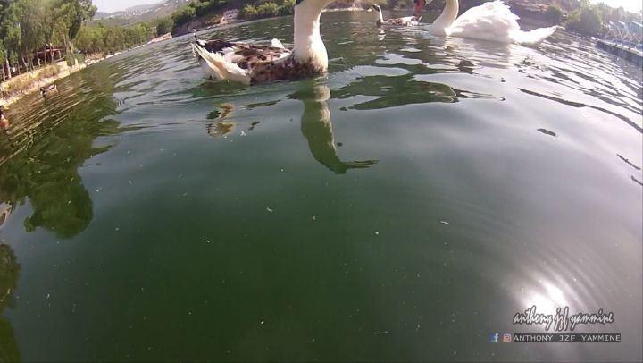 ومن عمقها تخرج الأسرار . . بحيرة بنشعي كما لم ترونها من قٙبِل . . . ... (Lac De Bnachii)