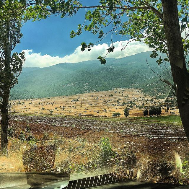 There is something beautiful in everyday ...You just have to find it ...!💚 (Beqaa Valley)