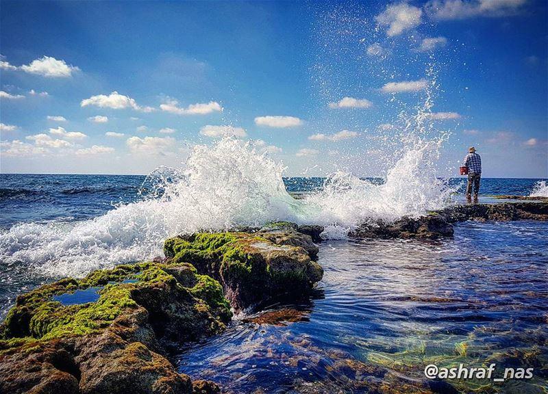 في مرفأ عينيكٍ الأزرقشباك بحري مفتوح...وطيور في الأبعاد تلوحتبحث عن جزر... (Tyre, Lebanon)