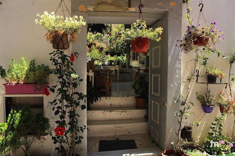 -Open doors ... Open hearts- ... ptk_lebanon amazinglebanon ... (Tyre, Lebanon)