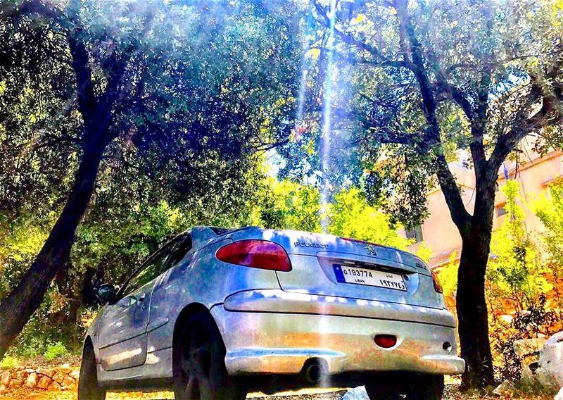 Morning glory beautifulride cars ride nature sunny psl parking ...