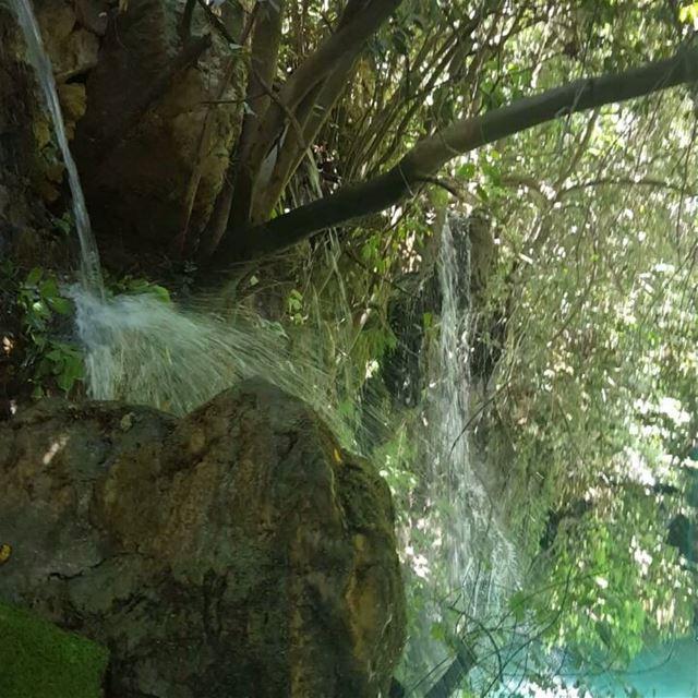 nature trees falls family instapic instaphoto naturelovers lebanon chouf... (شلالات الزرقاء -بعقلين)