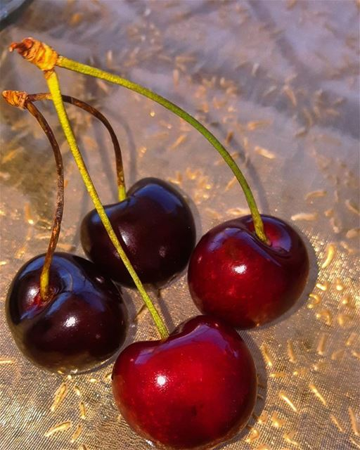 fruits fruit cherry karaz food yum😋 yummy lebanon🇱🇧 Hasbaya ... (Hasbaya)