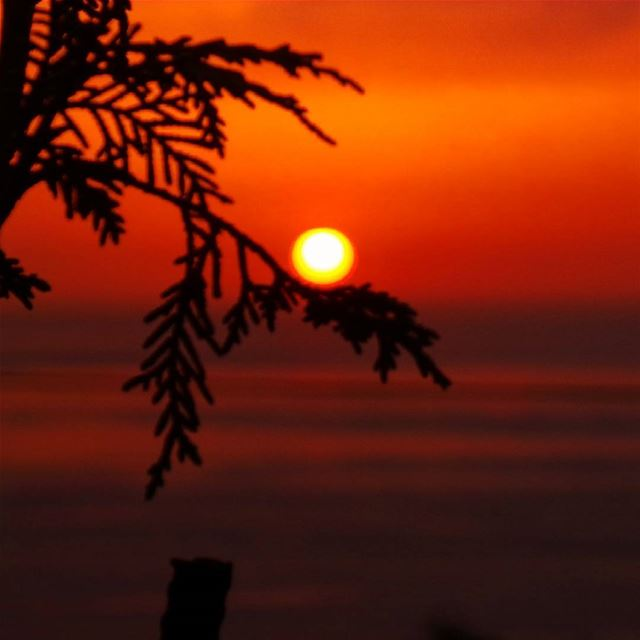 nikontop_ nikonworld bns_sky bns_sunset naturelovers unlimitedsunset... (Radio voix du liban 93.3 - اذاعة صوت لبنان)