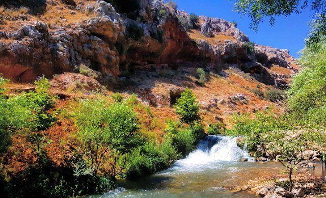 qilia river litaniriver lebanon🇱🇧 lebanon delaffe instalike ... (Qilia نهر الدلافة)