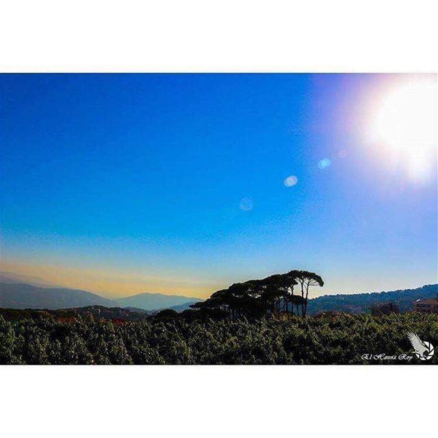 •Good morning!•صباح الخير!•Saba7o!•Bonjour!•Bom dia!... (Baabdâte, Mont-Liban, Lebanon)