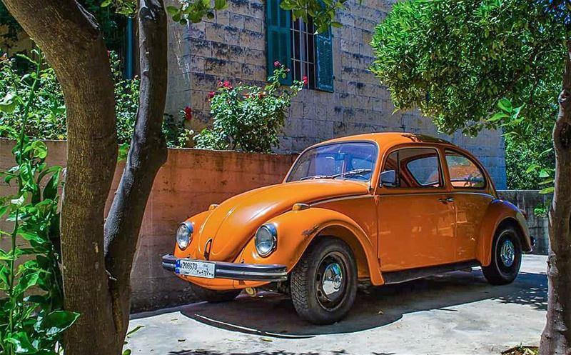 Good morning 😊😍................... Lebanon ... (Beïno, Liban-Nord, Lebanon)