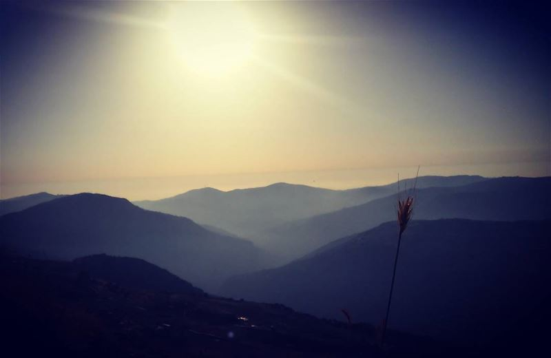 🌾 livelovebotmeh livelovelife lebanon beirut shouf ... (My Lebanon)