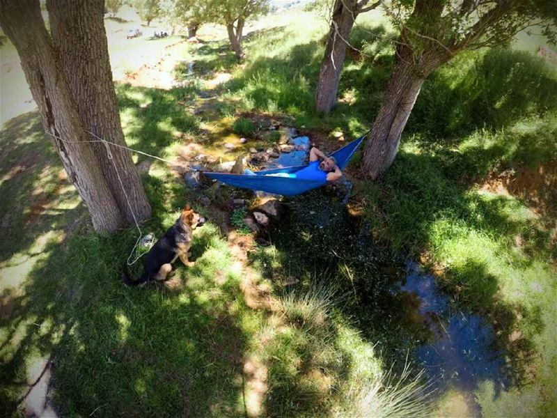 hamock camping campinglebanon hiking hikingadventures photoftheday ...