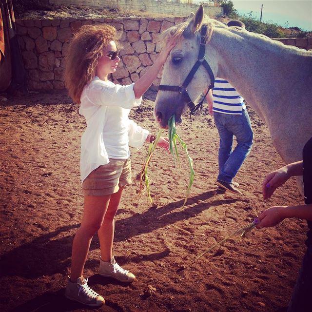 tb lebanon fun tags4likes nature farm horse equitation friends ...