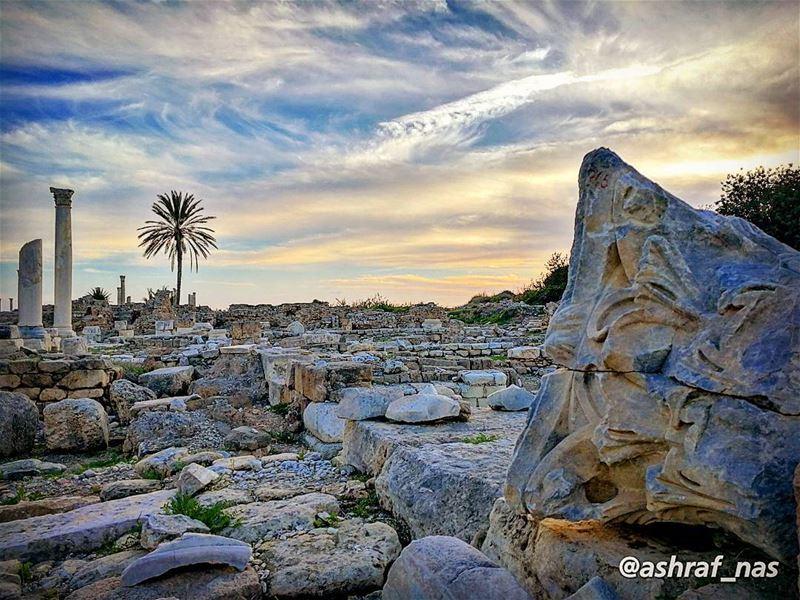 أيها الناعم في دنيا الخيالتذكر العهد وماضي الصفحات...لا على بالك ما طاف ب (Roman ruins in Tyre)
