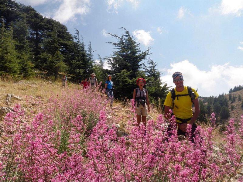 Hiking Barouk - Maasser el Chouf - Sunday 2 Jul 2017 - barouk ...