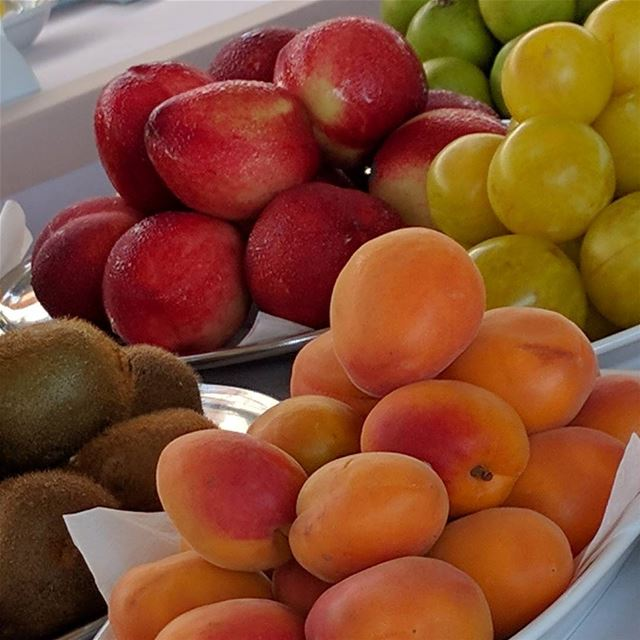 fruit   fruits   fruitslovers   peach   apricot   prune   kiwi  ... (Amchit Mhanna)