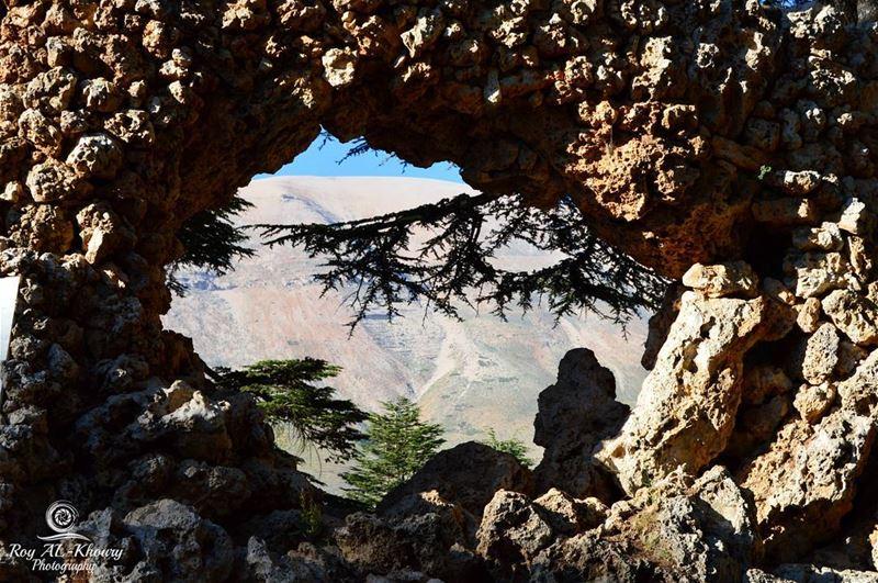 RoyALKhouryPhotography cedars lebanon photography photo photos ...