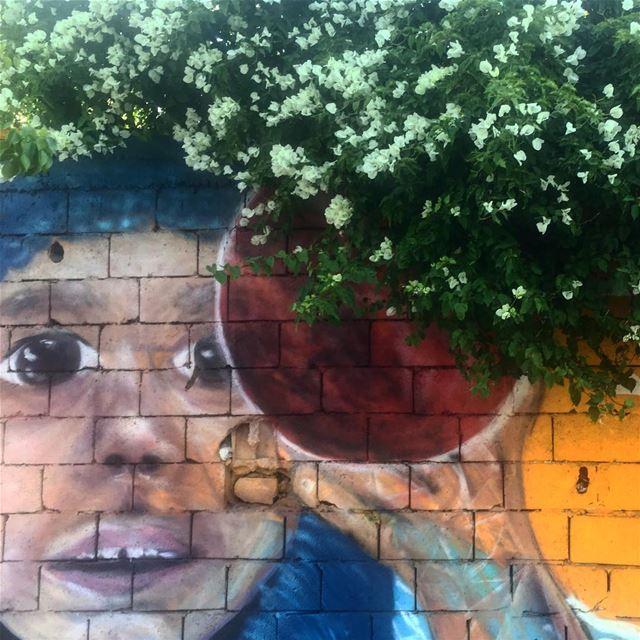 Morning encounters Lebanon beirut graffiti graffitiart graffitiwalls ...