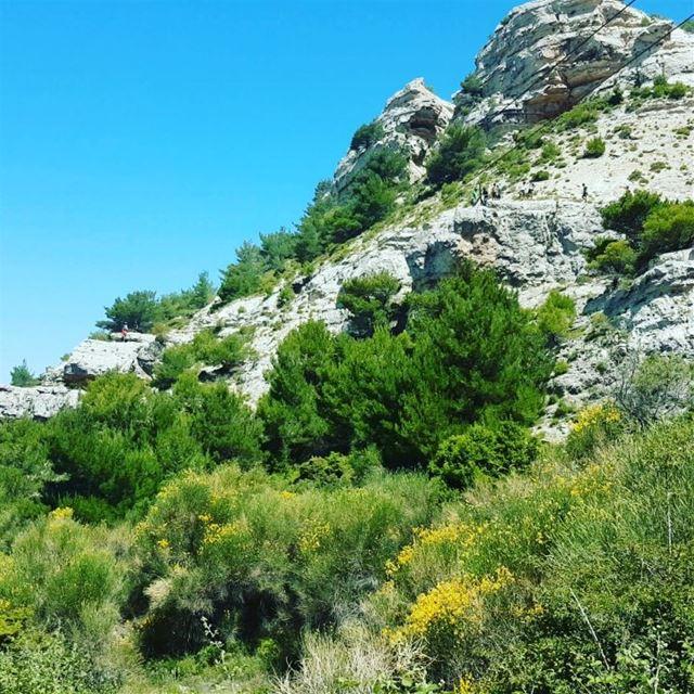 zipline ehdenadventures madeinehden outdooractivities lebanon ...