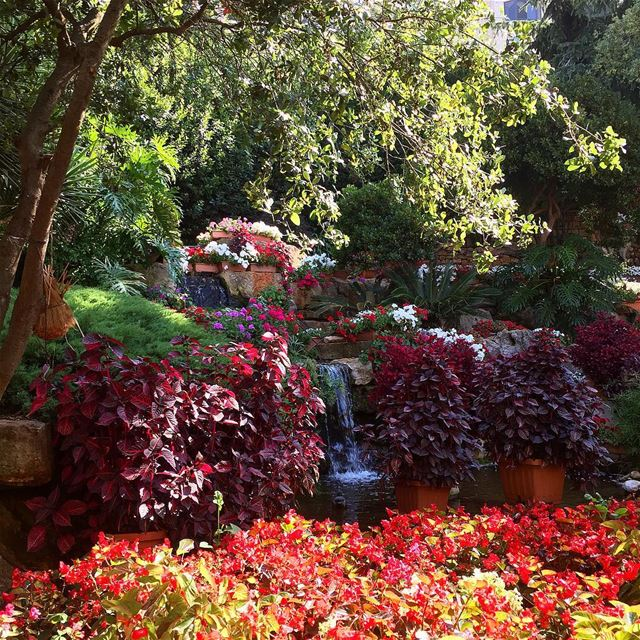 A lush garden great food and a super fun playground await you @mouni (Mounir)