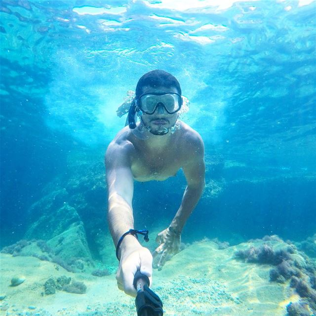 Do you believe in mermaids? livelovebeirut yallagopro 🐠