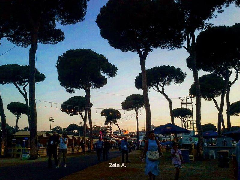 fun festival culture streetphotography lebanonspotlights oldbeirut ... (Beirut Cultural Festivals)