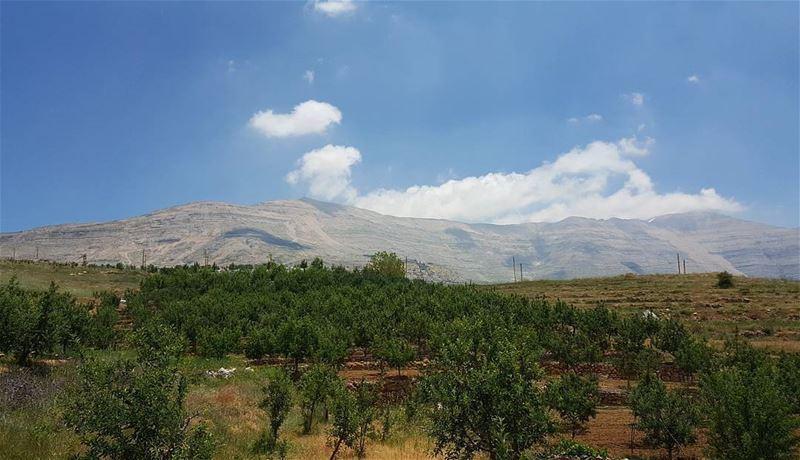 حبيتك... وسع الغيم بصبحيات يرحل خلف تلال تلال!!! 🇱🇧... fayrouz ... (Qanat Bakish, Mont-Liban, Lebanon)