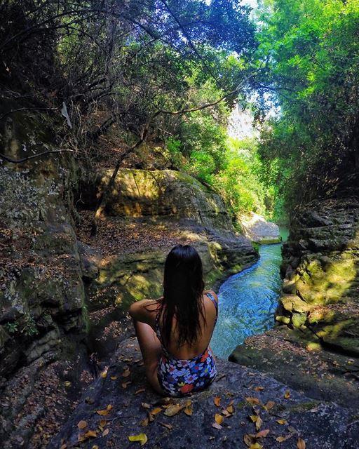 Random discoveries 🍂🍂🐸🕷🕸🦂🦎....... gopro goprohero4 hiking...