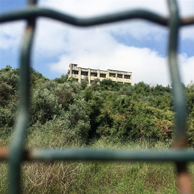 Abandoned factory in the midst of nature 🏚🏚 lebanon instapic ...