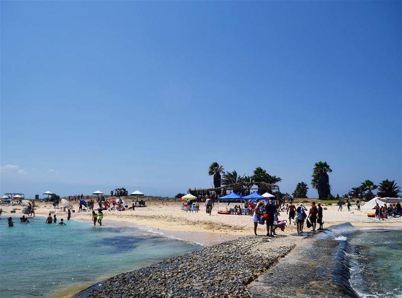 Hello July ♥ palmisland postalcard heaven tripoli lebanon nikon ... (Palm Islands- El Mina Lebanon)