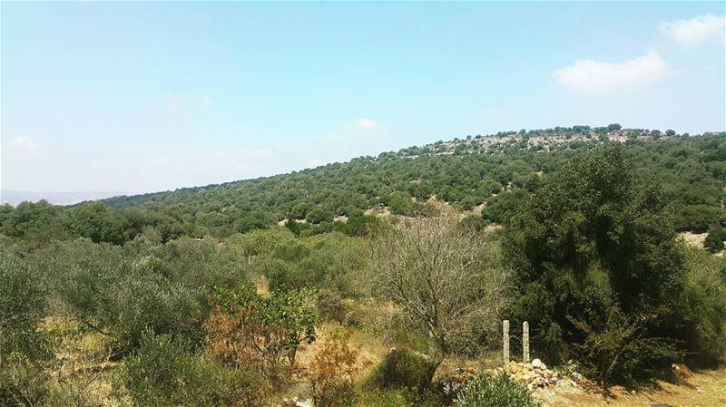 yaroun yarounday amazingview😍 nature southlebanon lebanoninapicture...