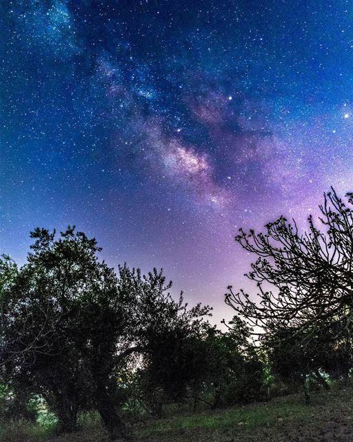 مجرة درب التبانة من سماء حومين الفوقا milkyway stars night ...