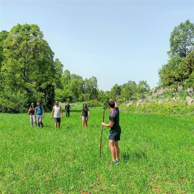 🚶🌳🌾🍃🌞 hike field sports green nature hikers akkar outdoors ... (غابة العزر-القموعة)