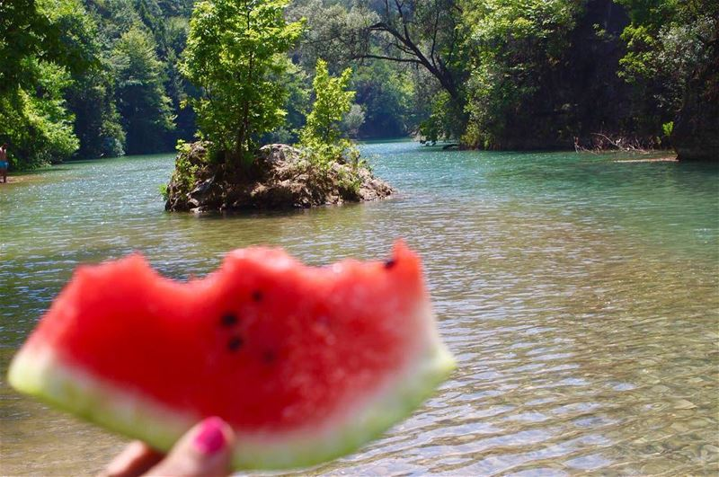 morningmotivation fresh delicious amazing lovenature lebanontimes ... (Chouwen)