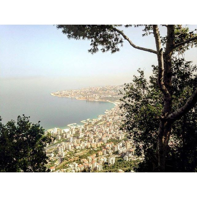 Summer time blossoming over @livelovejounieh by @peterghanime (Joünié)