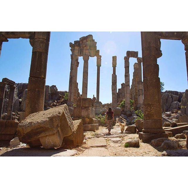 Exploring archeology in Kfardebian with @livelove.pets by @melissaelhachem (Kfardebian)