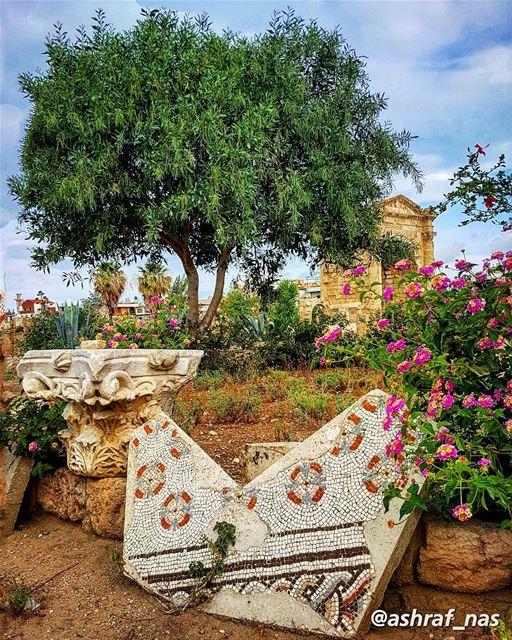 اسوارة العروس مشغولة بالدهبوانت مشغول بقلوب يا تراب الجنوب...رسايل الغياب (Roman ruins in Tyre)