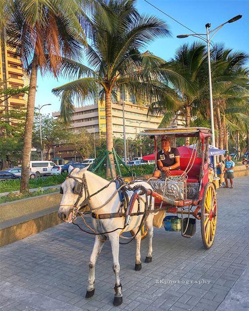 Manila Corniche 🐎 • 😁 • ig_today ig_eurasia igersphilippines ... (Manila, Philippines)