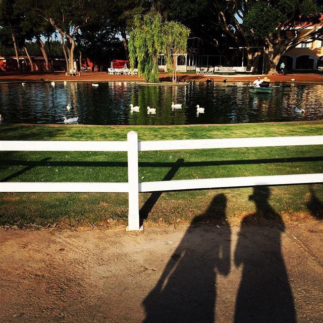 Nature lovin' 🐤🍂 lebanesebucketlisters lebanon beirut tyre ducks ... (Al-Yasmine Guesthouse)