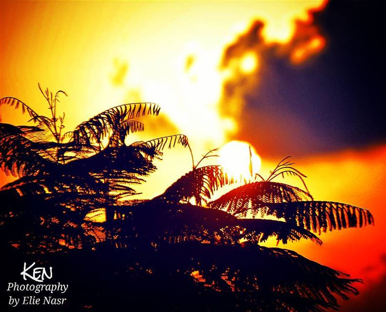 ...كان حضورك لي شمس تهوى المغيب... محمود_درويش sunsets sun sea ... (Al Rawsheh, Beirut - Lebanon)