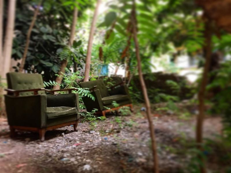 "Memories of a hidden backyard garden.. ""You have to look with your heart... (Beirut, Lebanon)"